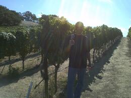 Myself at our first stop in Sonoma. , RENATO D - October 2011