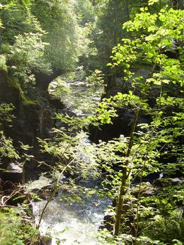 This is part of the hike through the forest, just prior to lunch. , Kimberly A - August 2011