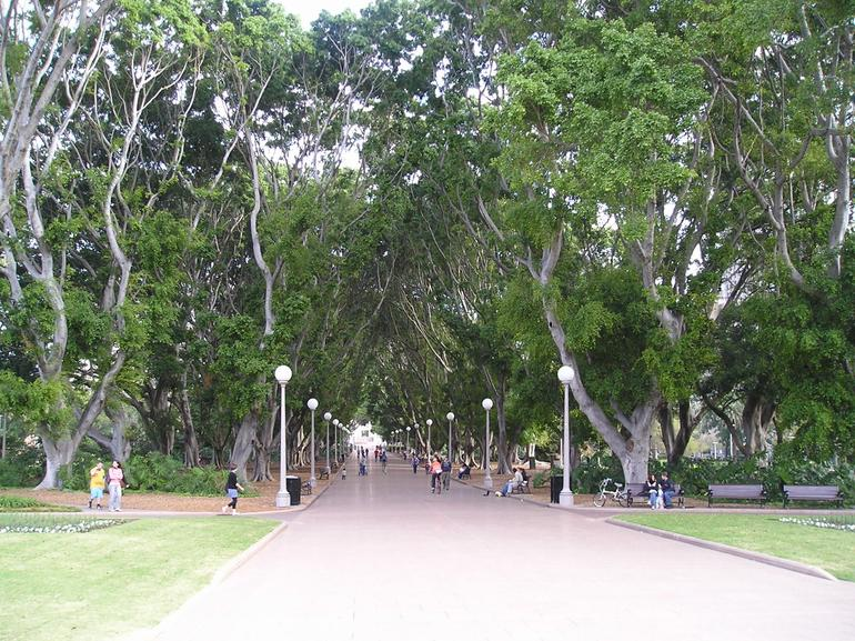 Sydney Bike Tour - Hyde Park - Sydney
