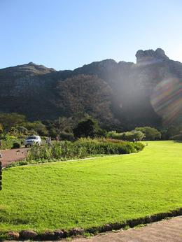 Photo of Cape Town Cape Peninsula Tour from Cape Town Botanical Gardens
