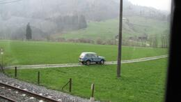 Photo of Zurich Mount Titlis Day Tour from Zurich grass is greener