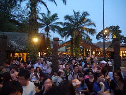 Photo of Singapore Singapore Zoo Night Safari Tour with optional Buffet Dinner The queues that spoilt this experience