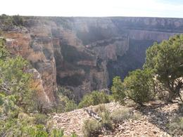 Photo of Las Vegas Grand Canyon South Rim Bus Tour with Optional Upgrades Grand Canyon South Rim
