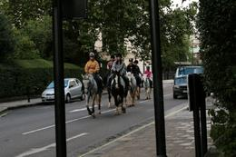 Photo of   Horse Riding in Hyde Park