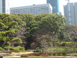 Photo of Tokyo Panoramic Tokyo Day Tour - Meiji Shrine, Asakusa Temple and Tokyo Bay Cruise Imperial palace east garden