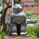 Photo of Medellín Fernando Botero Walking Tour of Medellín Kitty