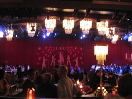 Photo of Paris Lido de Paris Dinner and Show Lido Lounge