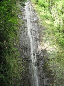 Manoa Waterfall - December 2007
