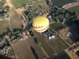 Photo of Napa & Sonoma Napa Valley Hot-Air Balloon Ride with Sparkling Wine Brunch NAPA Valley from the Top