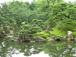 Photo of Kyoto Kyoto Full-Day Sightseeing Tour including Nijo Castle and Kiyomizu Temple Nijo Castle