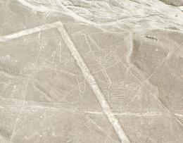 One of the best pictures we have of the Nazca lines. , Rebecca H - September 2014