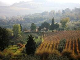 Tuscan Countryside, Michael W - November 2008