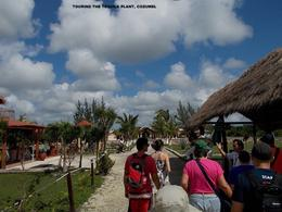 Be sure to stop by the island's only tequila plantation. Part of the tour package in Cozumel. , david d - December 2014