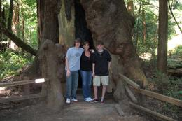 The 3 of us loving our Muir Woods Tour! , Melissa G - July 2011