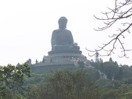 Photo of Hong Kong Lantau Island and Giant Buddha Day Trip from Hong Kong Giant Buddha