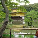 Photo of Kyoto Kyoto Full-Day Sightseeing Tour including Nijo Castle and Kiyomizu Temple Golden Pavilion