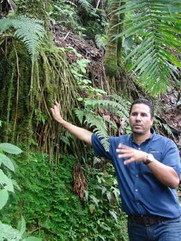 Photo of San Juan El Yunque Rainforest Half-Day Trip from San Juan Our tour guide - Tony