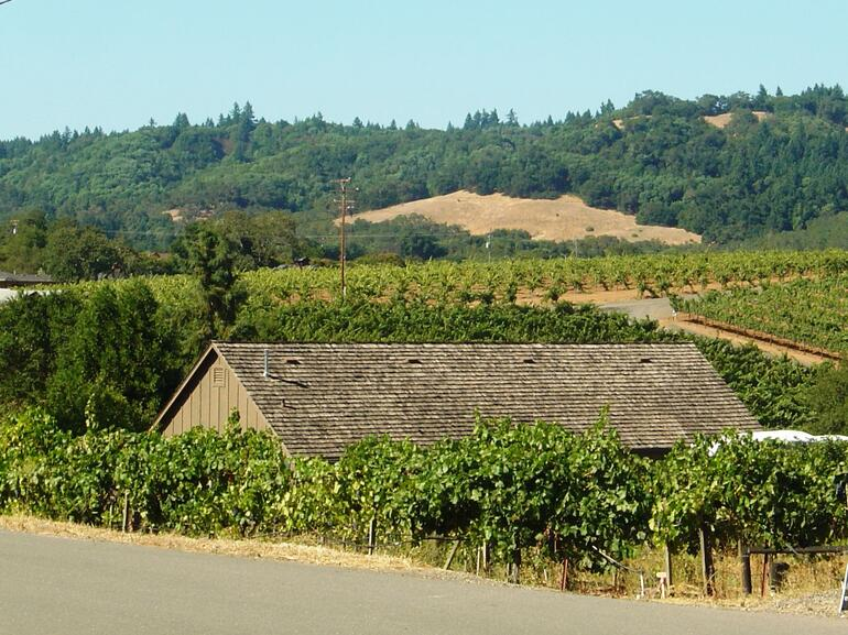 Wine Country - San Francisco