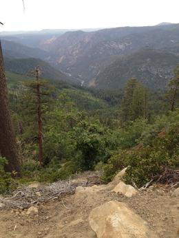 From two day tour of Yosemite, Melinda - August 2014