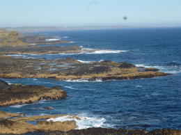 Photo of Melbourne Phillip Island Penguin Small Group Eco Tour from Melbourne Beautiful coastlines