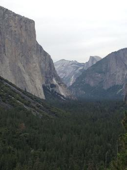 Photo of San Francisco 2-Day Yosemite National Park Tour from San Francisco Looks much bigger in real life