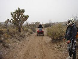 Photo of Las Vegas Hidden Valley and Primm ATV Tour The Hidden Valley ATV Tour -- So Much Fun