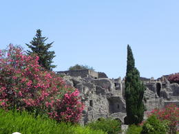 Photo of Rome Pompeii Day Trip from Rome A view of the ruins in Pompeii