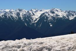 Photo of Seattle Small-Group Olympic National Park Tour from Seattle Olympic peak