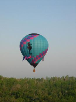 Photo of Orlando Orlando Sunrise Hot-Air Balloon Ride Sea Horse Balloon