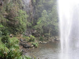 Photo of   Springbook Fulld Day Bushwalking Tour