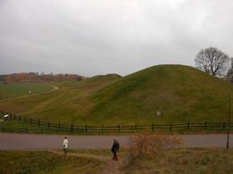 Photo of Stockholm Viking History Half-Day Tour from Stockholm Uppsala