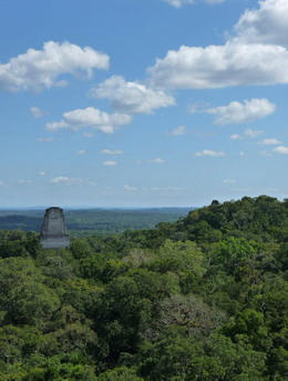 Photo of Guatemala City Tikal Day Trip by Air from Guatemala City with Lunch View