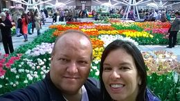 Me and my wife at the Tulip hall in Keykenhof , deluca00 - April 2015