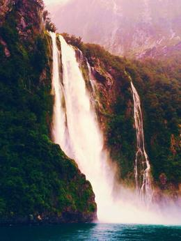 Photo of Fiordland & Milford Sound Milford Sound Full-Day Tour from Te Anau Magnificent Waterfall