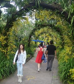Photo of Singapore Singapore City Tour with optional Singapore Flyer National Orchid Gurden