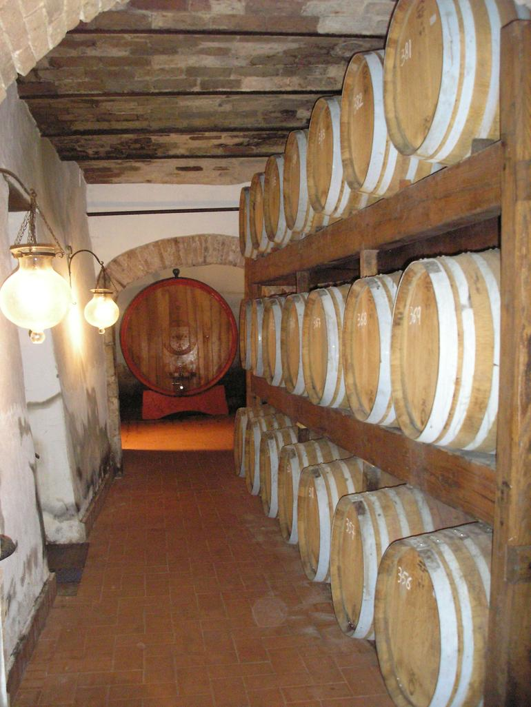 Chianti Region Wine Tasting Half-Day Trip from Florence - Florence