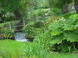 Photo of London Lunch in the Cotswolds from London Garden and waterfall