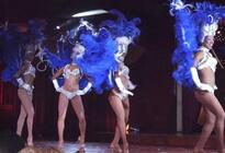 Photo of Puerto Plata Ocean World Puerto Plata - Bravissimo Show and Dinner Package