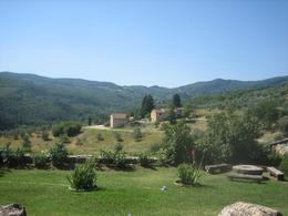 Photo of Florence Chianti Region Wine Tasting Half-Day Trip from Florence The View