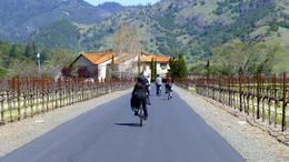 Photo of Napa & Sonoma Wine Country Sip 'n' Cycle Bike Tour Another winery. As good as it gets!