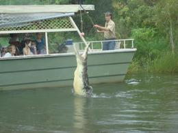 On the boat in the croc waters. The boat is completely safe and sealed though. Good fun!, Gabrielle H - March 2008