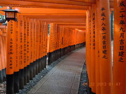 Photo of   Fushimi Inari shrine