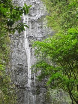 Photo of Oahu Manoa Waterfall Small Group Adventure Manoa Waterfall - 17-July-2009
