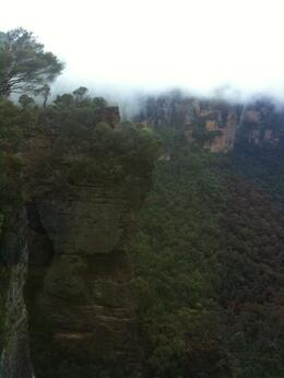 Photo of Sydney Blue Mountains Nature and Wildlife Day Tour from Sydney Scenic World Cable Ride