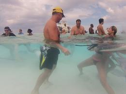Our group at Stingray City. Caressing a female stingray. , Rene C - October 2014