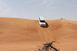 Photo of Dubai Hatta Heritage Village and UAE Desert Tour by 4x4 from Dubai IMG_0199