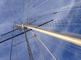 Tall ship indeed!, Trina Tron - September 2014