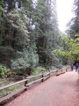Muir Woods , medalik - October 2013