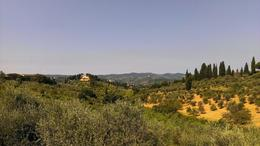 Photo of Florence Florence Vespa Tour: Tuscan Hills and Italian Cuisine Tuscany