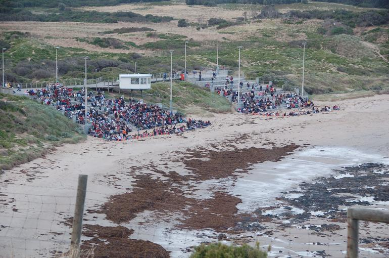 The main viewing area at Phillip Island - Melbourne